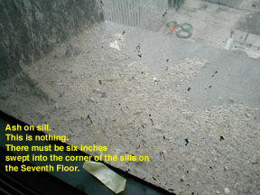 a north-facing window sill